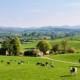 Bauernhaus auf dem Lande kaufen und umbauen