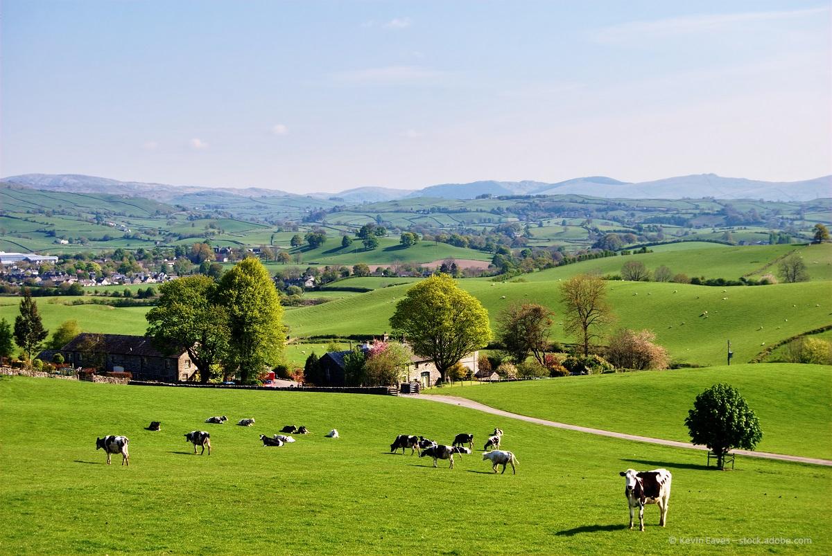 Ein Bauernhaus auf dem Lande umbauen - der Traum von vielen
