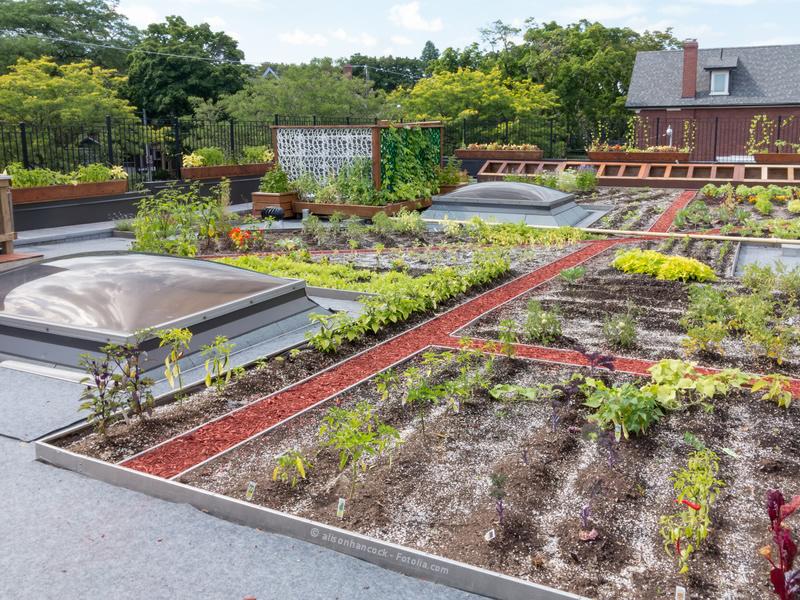 Gartenbau zum Beispiel in Stadtgebieten