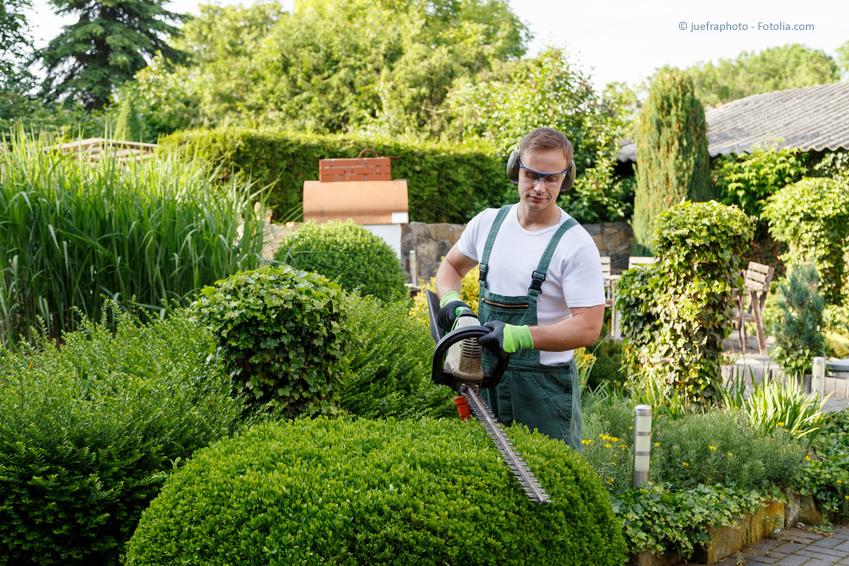 Professioneller Gartenbauer im Einsatz