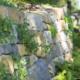 Sichtschutz für den Garten - die Natur liefert Ideen