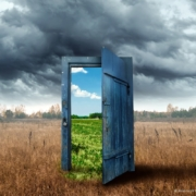 Klimawandel Natur, Bäume u.a Was wir tun können?
