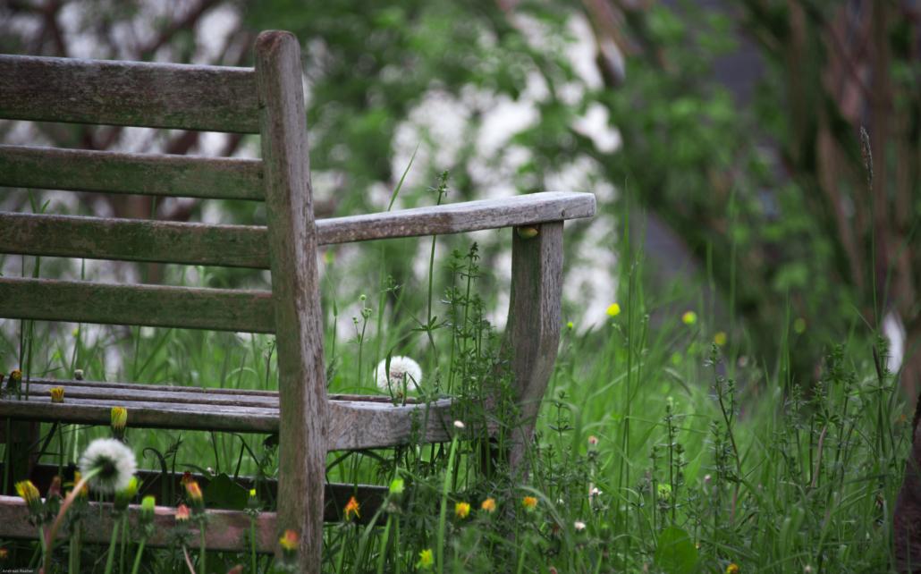 Garten geniessen dank dem professionellen Gartenbauer
