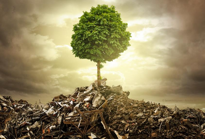 Im Trend: Umwelttechnik - Rückbau, Erdbau