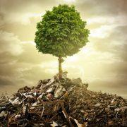 Umwelt und Entsorgung